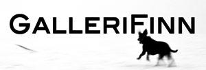 GalleriFinn Logo