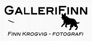GalleryFinn